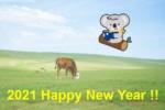 2021年のClever Koala Englishがスタートしました