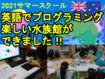 [夏休み子ども英語イベント]  楽しく英語で水族館をプログラミングできました!